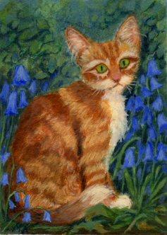 bluebells_cat1.jpg